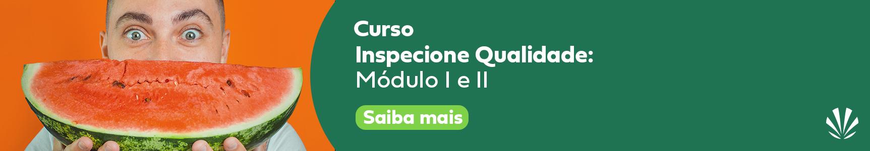 Curso Inspecione Qualidade-1