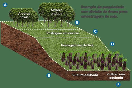 glebas