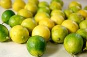 Limão taite amarelado