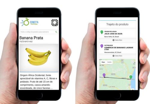 Ficha técnica banana prata