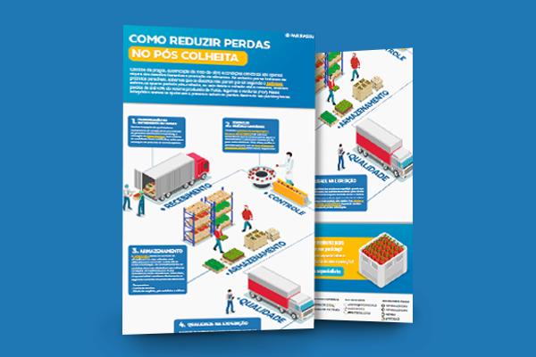 Infográfico_Como_reduzir_perdas_pós-colheita