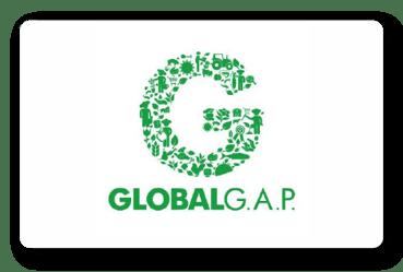 Logo GLOBAL G.A.P.