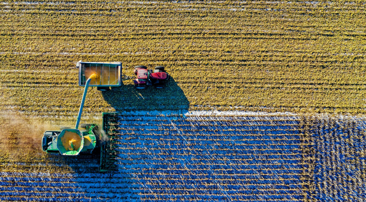 Trator na colheita