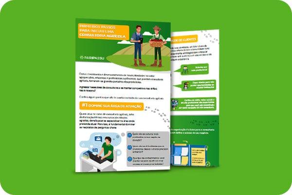 Infográfico - Primeiros passos para iniciar uma consultoria agrícola