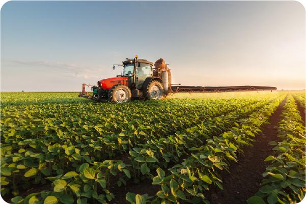 4 motivos para investir em agronegócio no Brasil