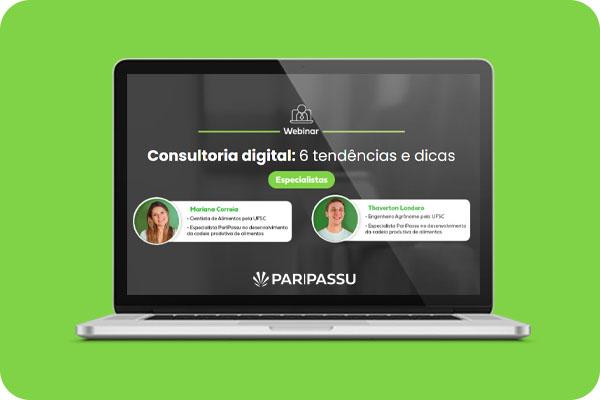 Webinar consultor